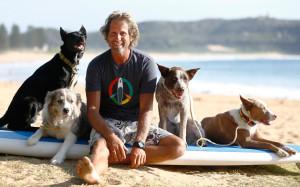 surfing-dogs-2_3577868k