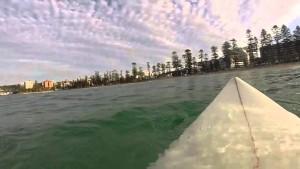 Видео встречи большой белой акулы и отважного серфера набрало более миллиона просмотров на Youtube