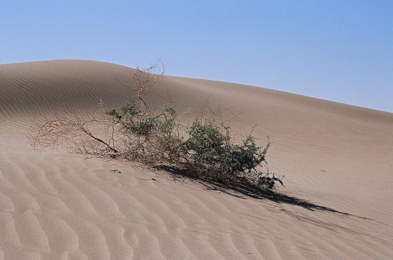 Огромный океан найден под пустыней в Китае (3)