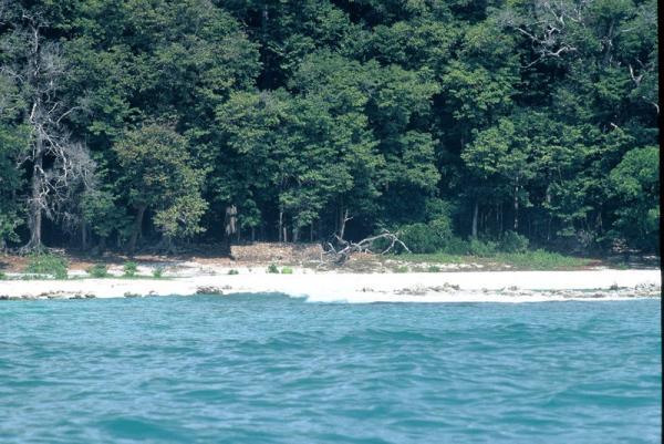6. Северный Сентинельский остров (Андаманские острова)