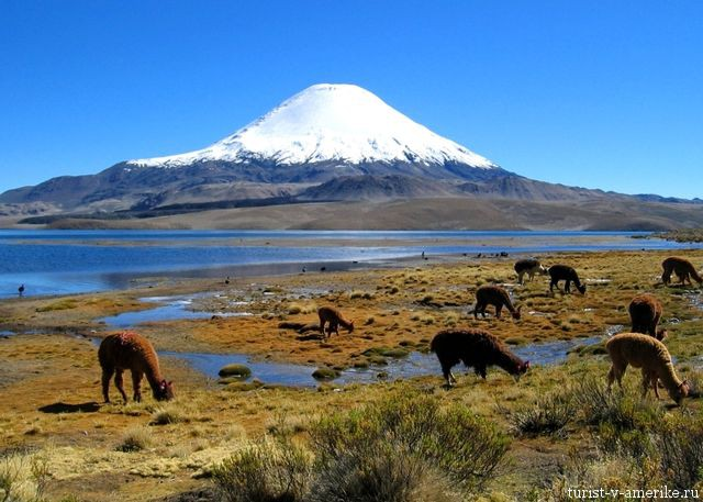 фото 6 вулканы